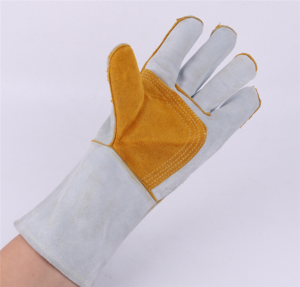 Protection Gloves (6)